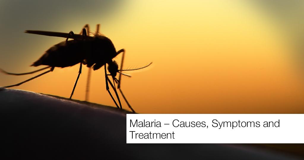 Malaria – Causes, Symptoms and Treatment