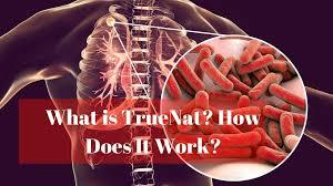 What is TrueNat Test?