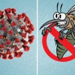 Dealing with Malaria during Covid-19 Pandemic