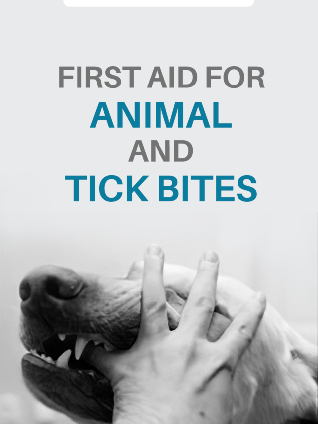 First Aid for Animal & Tick Bites